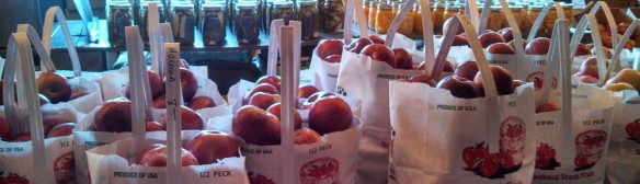 Organic apples in peck bags, at the Dwight Miller Orchards farmstand